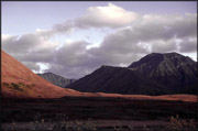 Purple Mountain, Noatak Valley